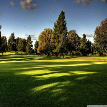 Elmia Park