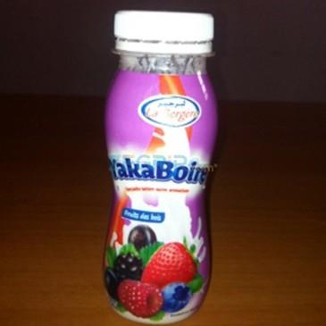 Yaourt aromatise gout fruits des bois 170gr